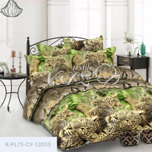Комплект постельного белья Полиэстер CY-13055_1771