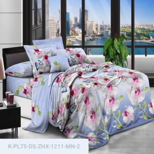 Комплект постельного белья Полиэстер DS-ZHX-1211-MN-2_15701