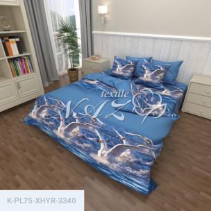 Комплект постельного белья Полиэстер XHYR-3340_65939