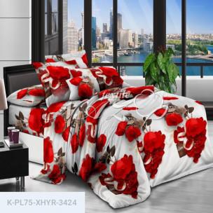 Комплект постельного белья Полиэстер XHYR-3424_66304