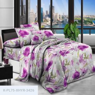 Комплект постельного белья Полиэстер XHYR-3426_66308