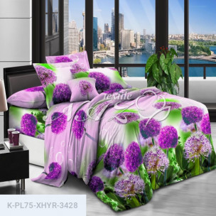 Комплект постельного белья Полиэстер XHYR-3428_66312